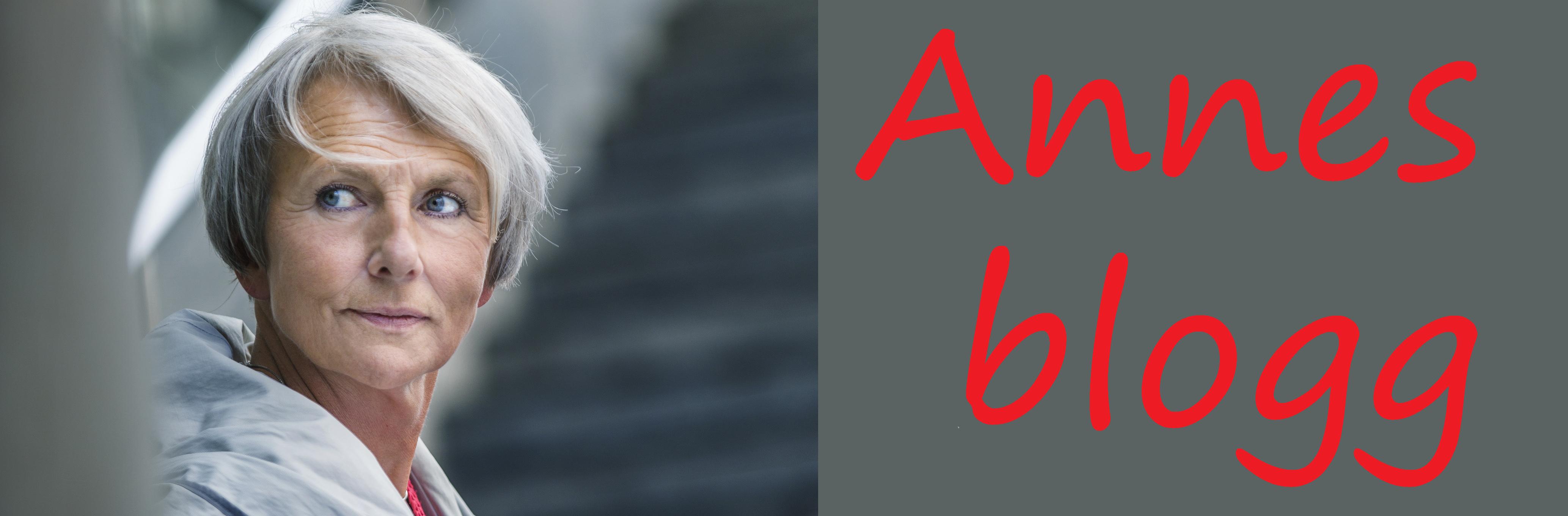 Annes blogg - Anne Finborud - vignett